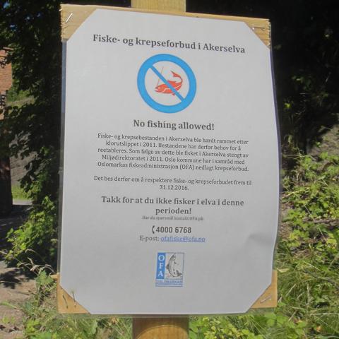 fiske-forbud-i-akerselva