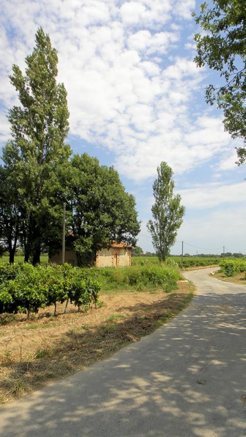 vinmarker-1